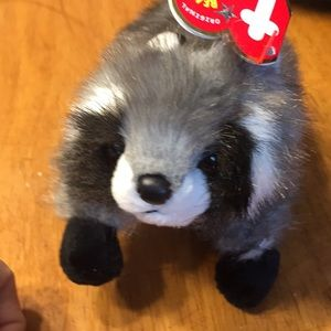 Other - TY raccoon SNOOPS